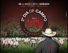 2º Dia de Campo – Nelore York apresenta tecnologias para pecuária