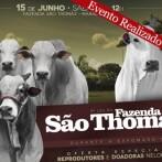 9º Leilão Fazenda São Thomáz